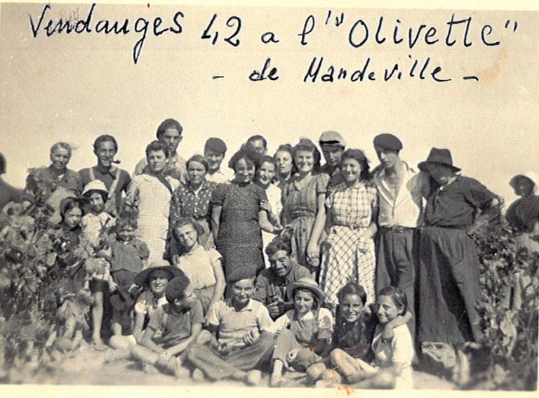 Vendanges 1942
